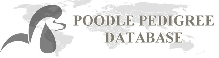 Poodle-Database